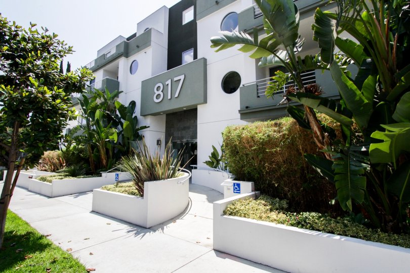 The building at 817 Alfred in West Hollywood