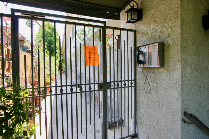Locked gate in 944 Palm with a telephone and an alleyway behind it