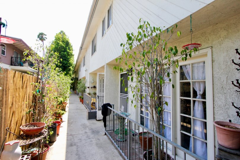 944 Palm and her beautiful walkway, West hollywood, California