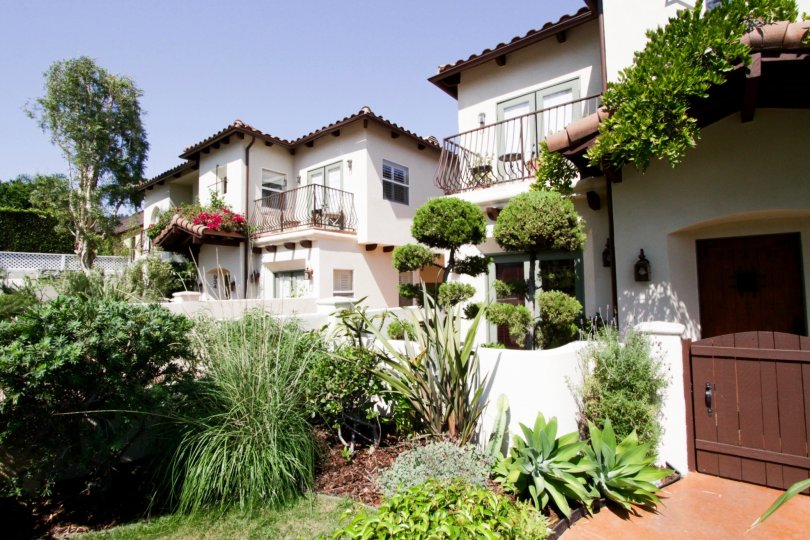 The landscaping around Casa Carmela in West Hollywood