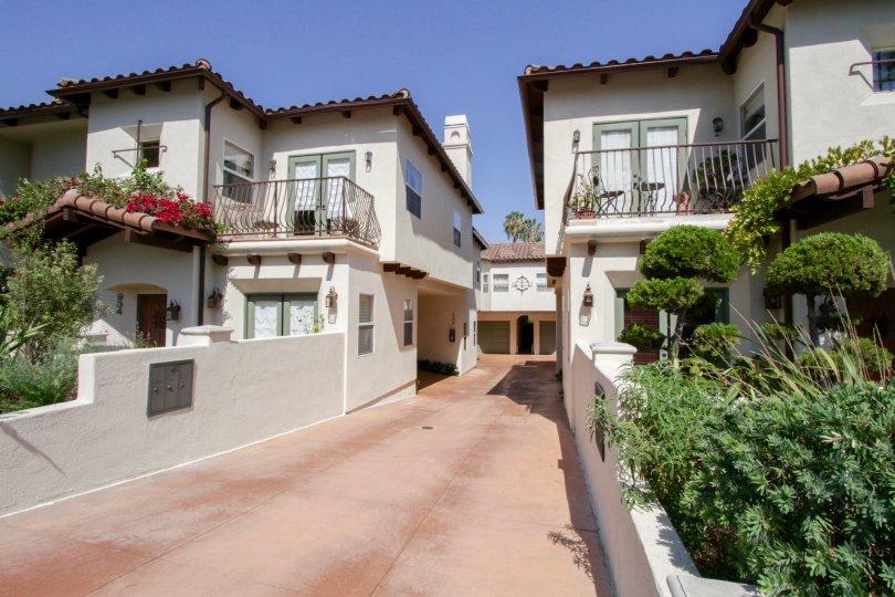 The drive into Casa Carmela