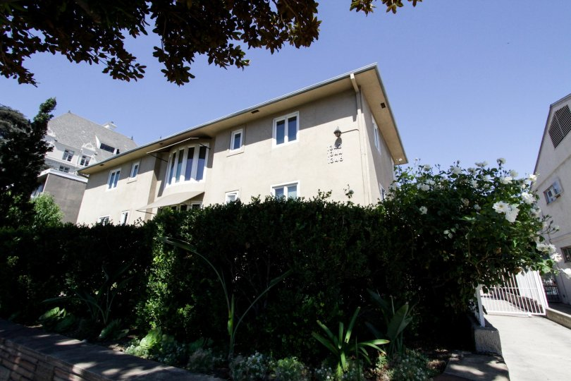The rear of the Crescent Terrace building in West Hollywood