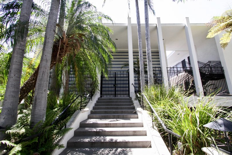 The stairs to the entrance of the Harper Regency in West Hollywood