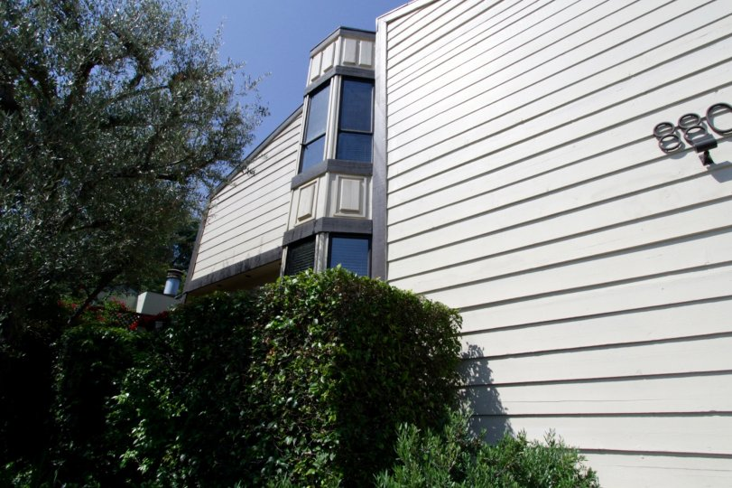 The windows within Hilldale Townhomes in West Hollywood