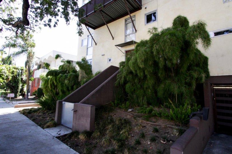 The landscaping around Laurel Court Lofts
