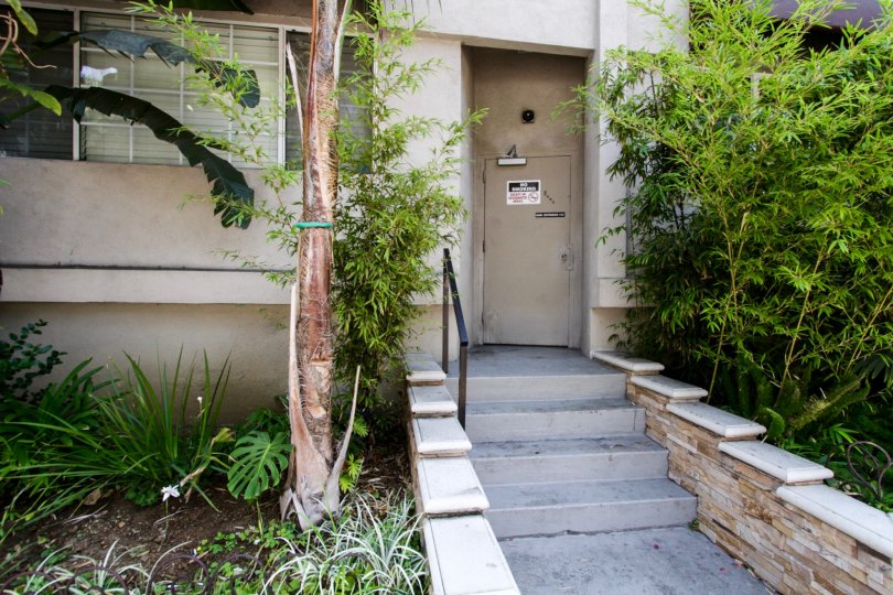 The stairs leading to the side of Terrace View in West Hollywood