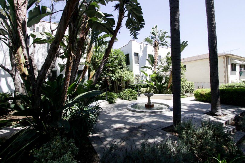 The landscaping at The Harper in West Hollywood