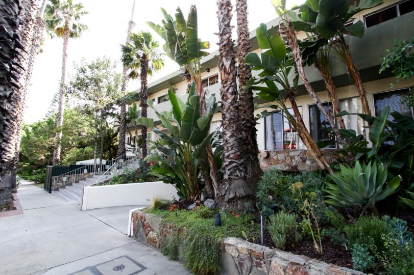 The landscaping throughout The Hayworth in West Hollywood