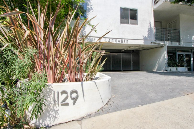 1129 numbered Larrabee building with red colored shrubs and big gate.