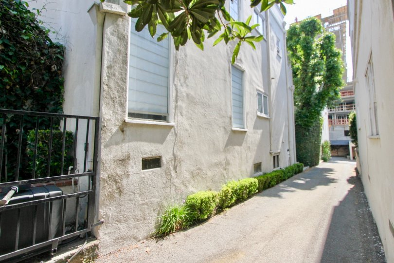 A narrow alleyway with green bushes and shaded windows at The Regency House in West Hollywood, California.