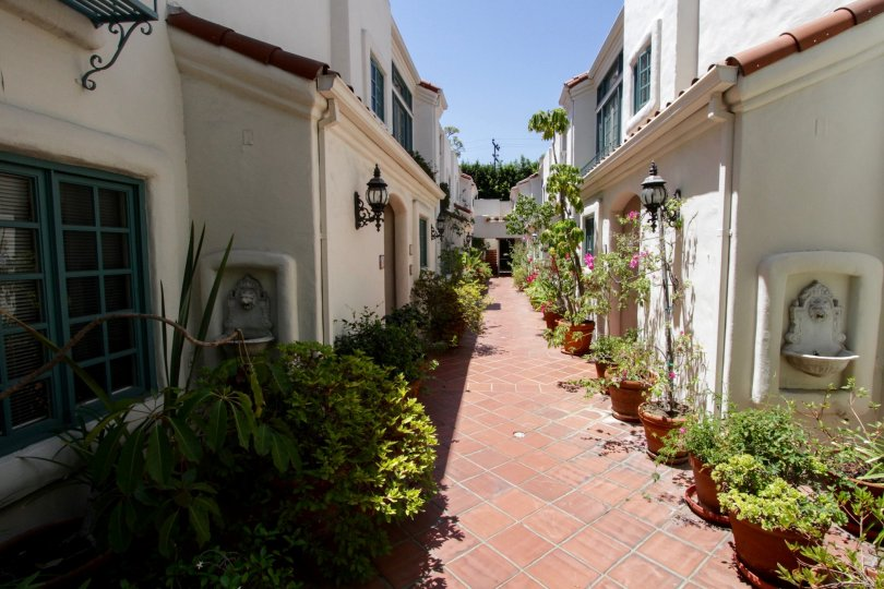 The walkway into Villa Flores