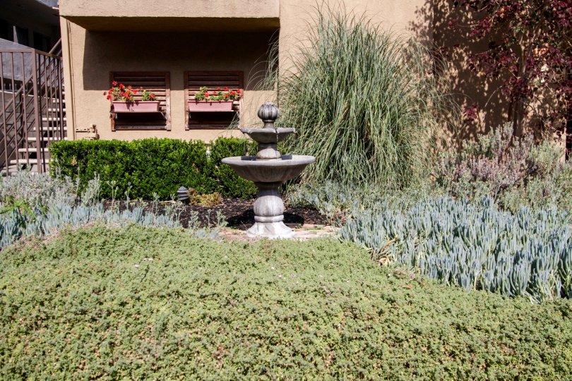The landscaping around Villas On Curson