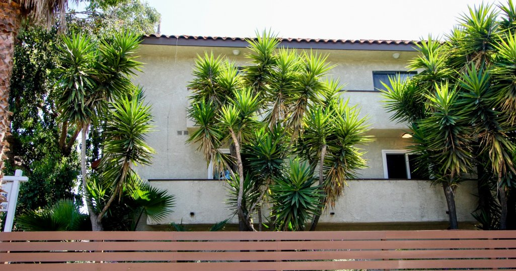 Side of 11574 Ohio community with trees and fence in West LA, CA.