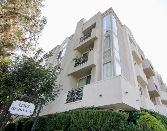 A sunny day in the 12203 Idaho with beautiful apartment and big tree infrond of apartment.