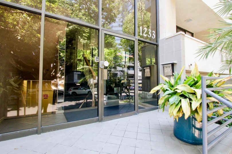 The entrance to 1233 Amherst in West LA, California, featuring a large decorative plant.
