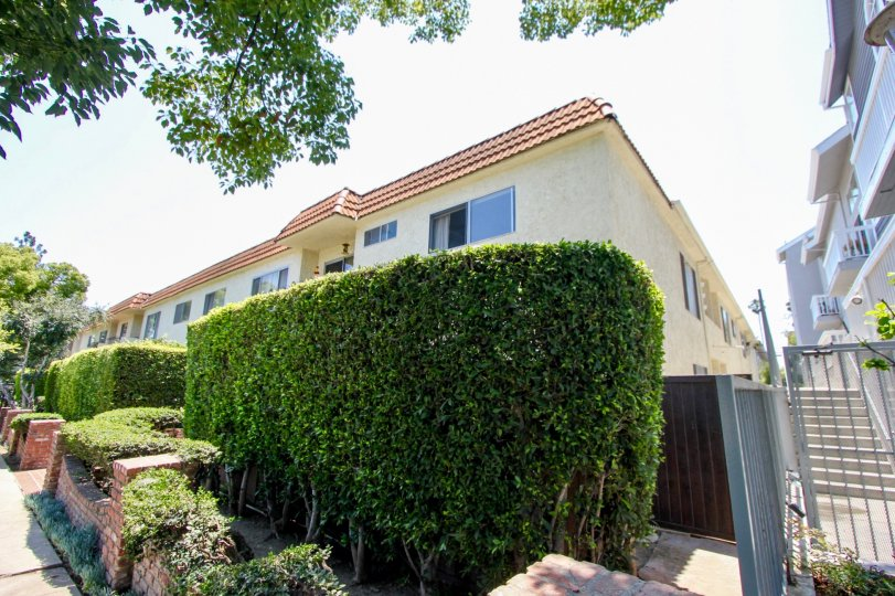 Serene neighborhood of 1323 Carmelina, West La, California