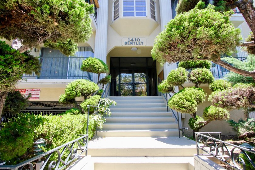 Stairs leading up to entrance with trees at 1410 Bentley in West LA, CA.