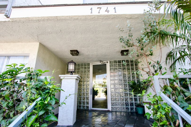 beautiful outside of 1741 Granville with her superb greenery, West La, California
