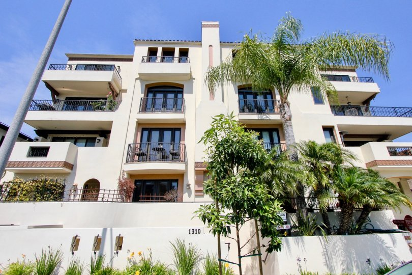 large buildling with several windows and balconies and palm tree gardens with grassy flowers