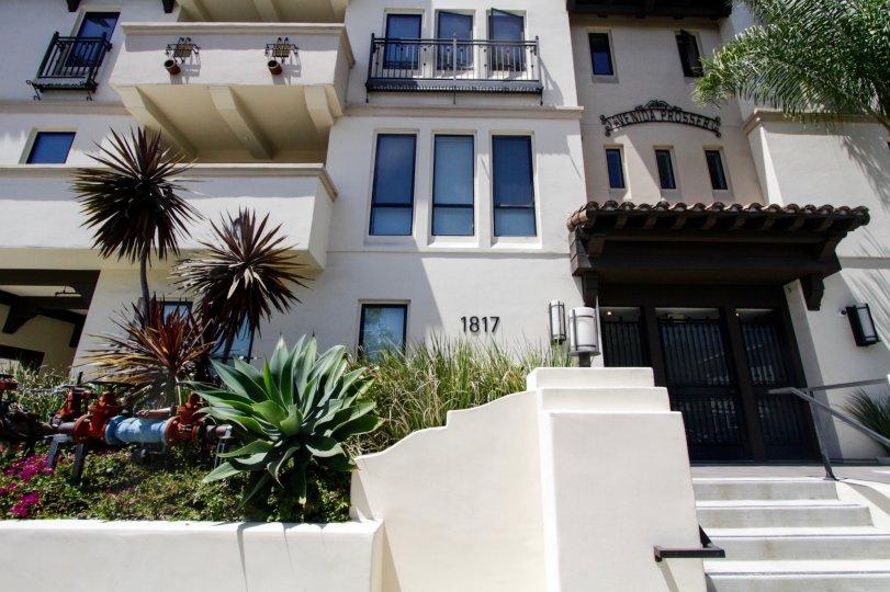 The landscaping seen at Avenida Prosser in West LA