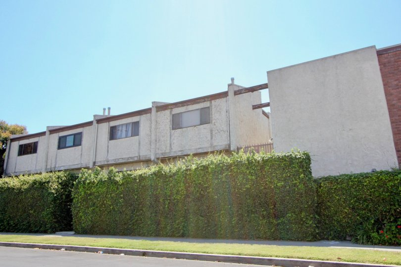 Large privet hedges provide privacy for residents of this old buildling
