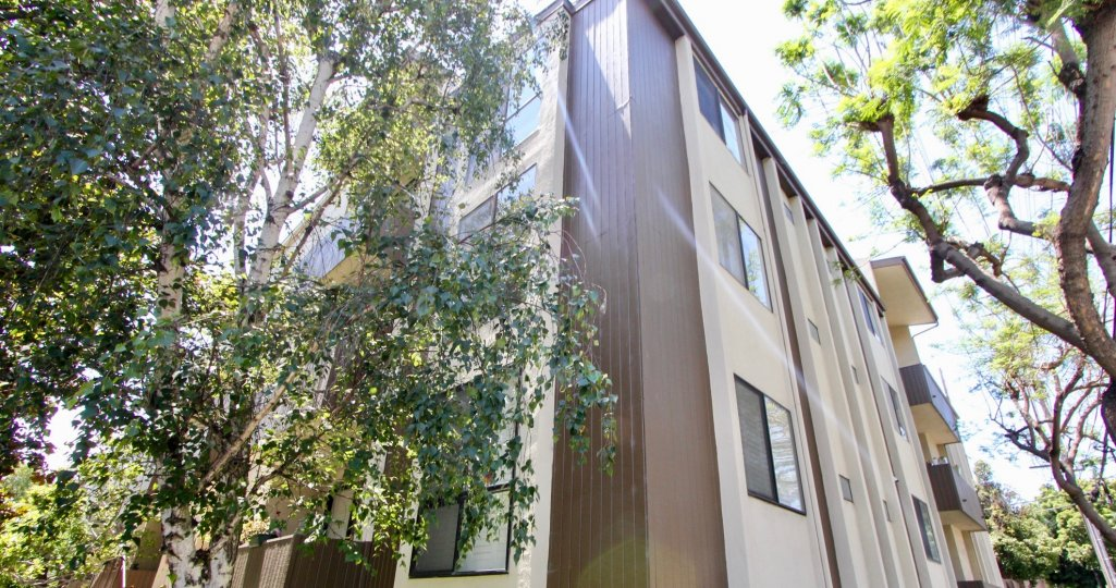 Bentley Ohio, West LA california apartment homes trees