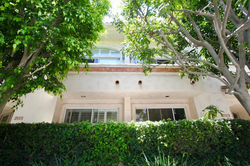 Trimmed hedges and large trees decorate this townhome in West LA