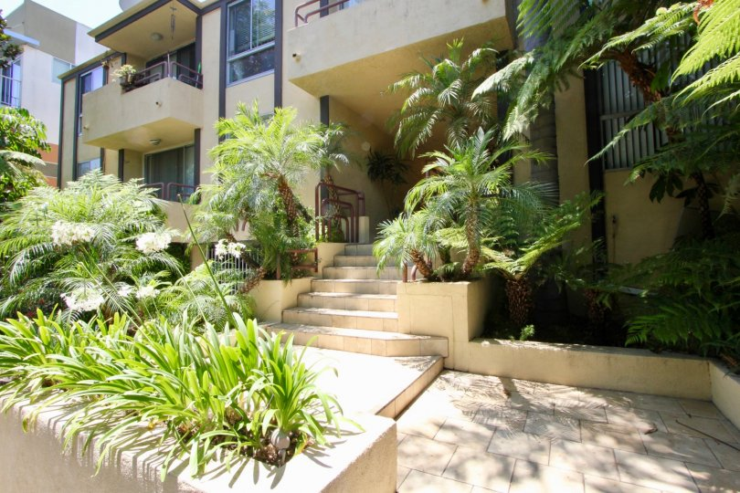 Lushly landscaped jungle-like entry stairs to units at Brentwood Terrace