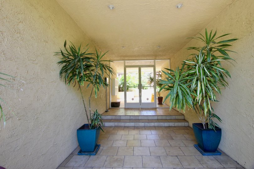 hall way of building at the brentwood terrace commuinty, with two palm tree plants on the sides