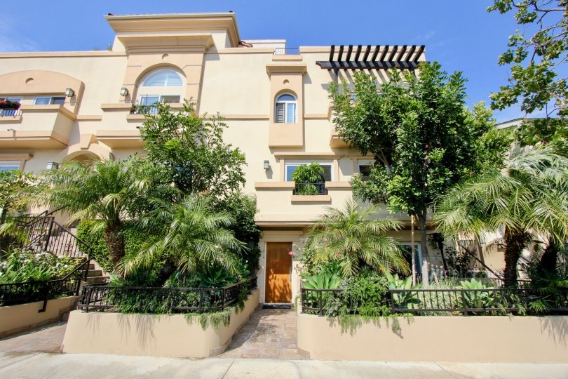 Large condos with big windows and palm trees with garden fences entrances to condows