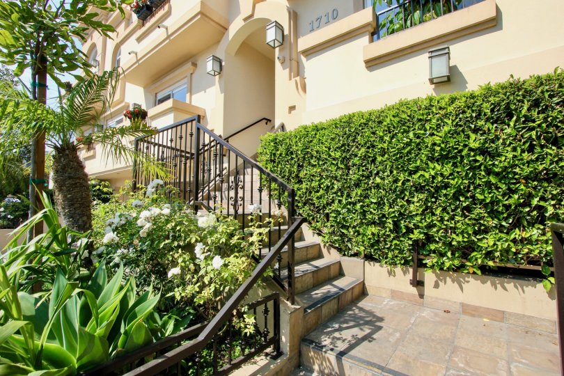 Front entry steps with foliage into a Granville Home