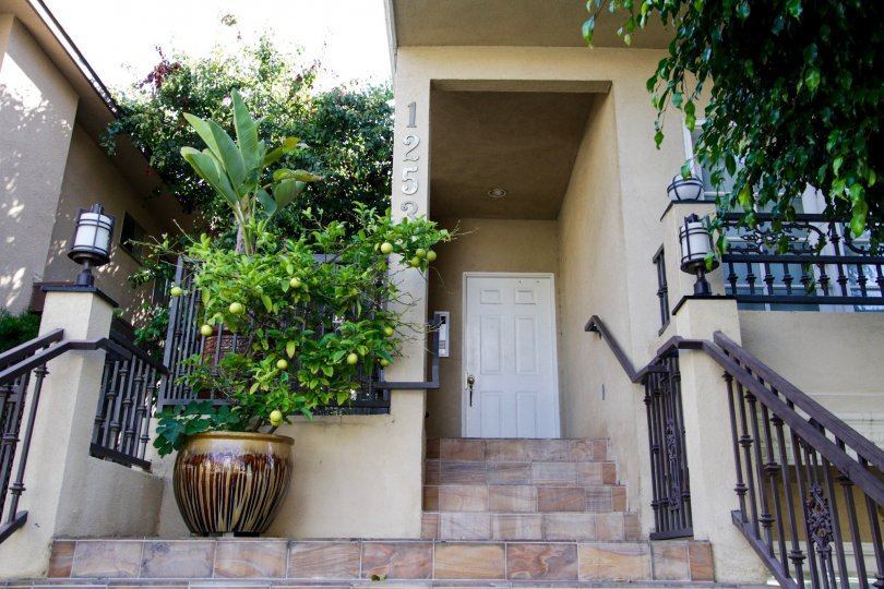 The beautiful entrances into Granville Townhomes in West LA