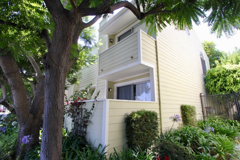 Beautiful Gardens and flowers with large shady trees and trimmed hedges line these West LA townhomes