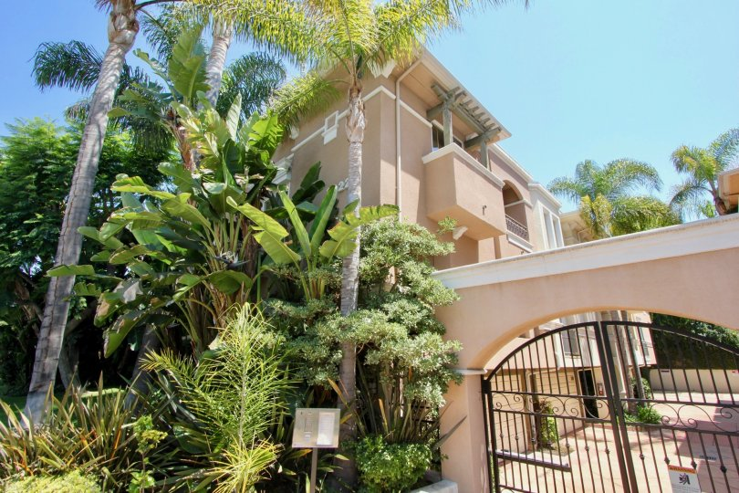 The gated entrance for these condos is iron and next to the palm tree forest