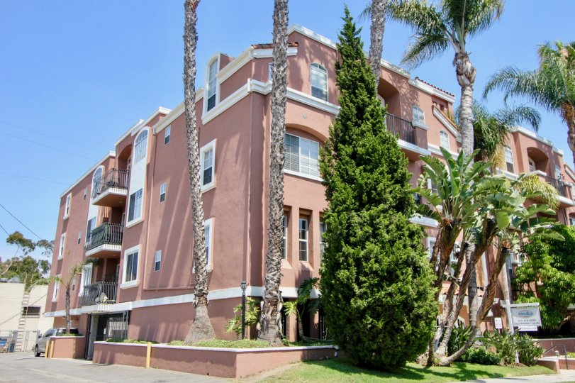 Experience the luxury in the apartment resides in Villa Rose