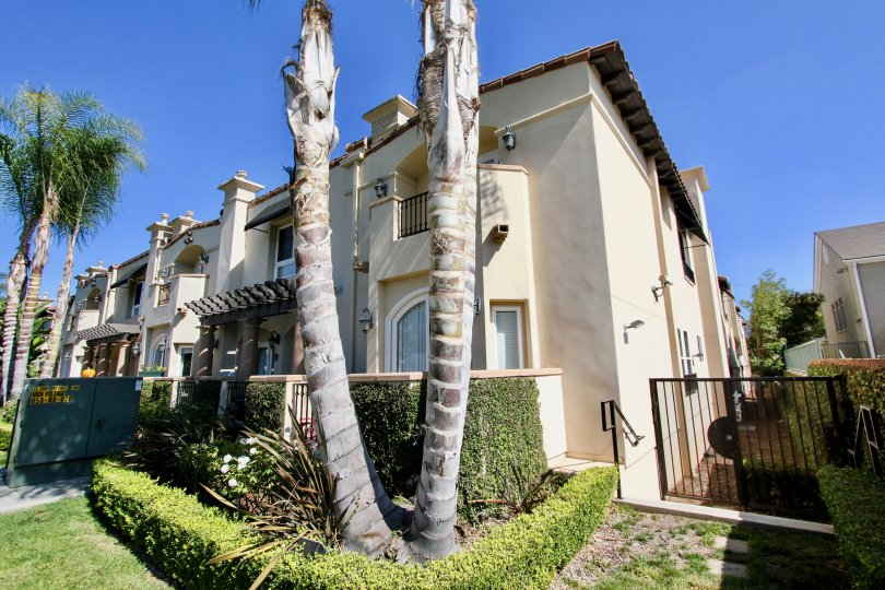 The trees in front of Villas at Kentwood in Westchester, California