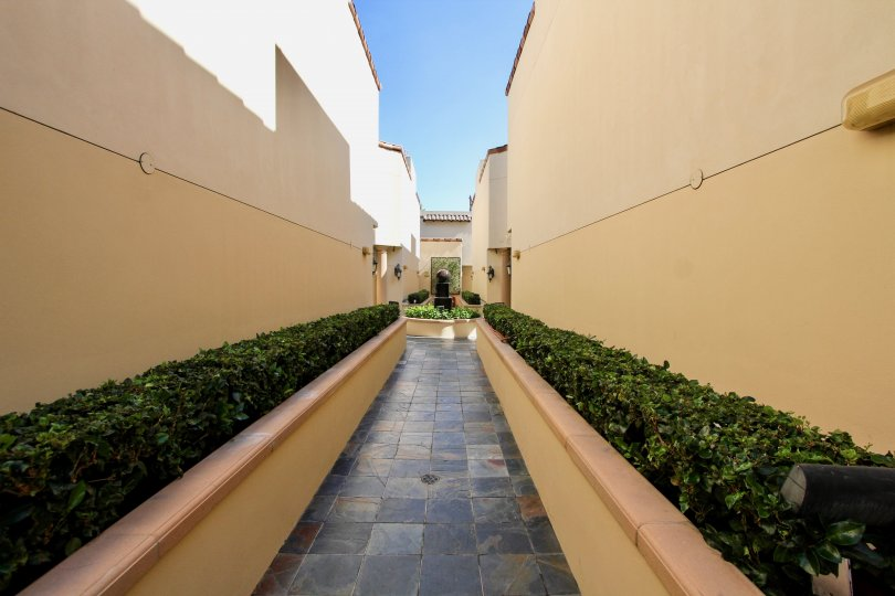 The sidewalk through Villas at Kentwood