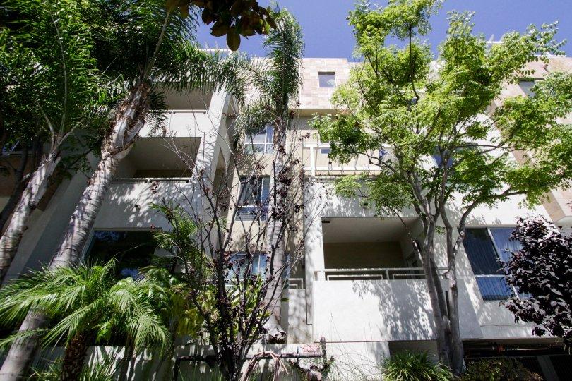 The balconies seen at Glen Court in Westwood