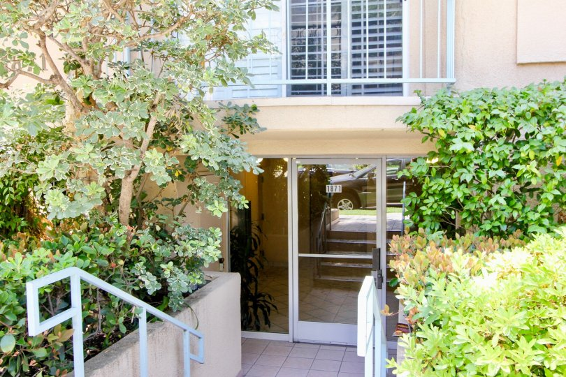 A spacious units in the heart of the city of Westwood California the Greenfield Condos