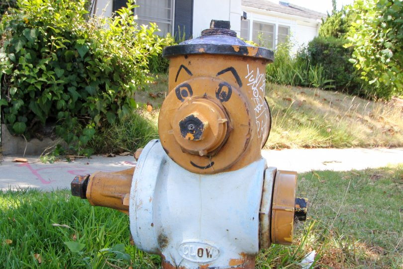 a funny hydrant with a face in front of a house in kinnard village