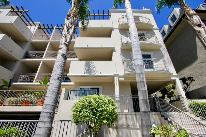 A sunny day at The Malcolm Avenue Condos, a off white building with palm trees and iron terraces.