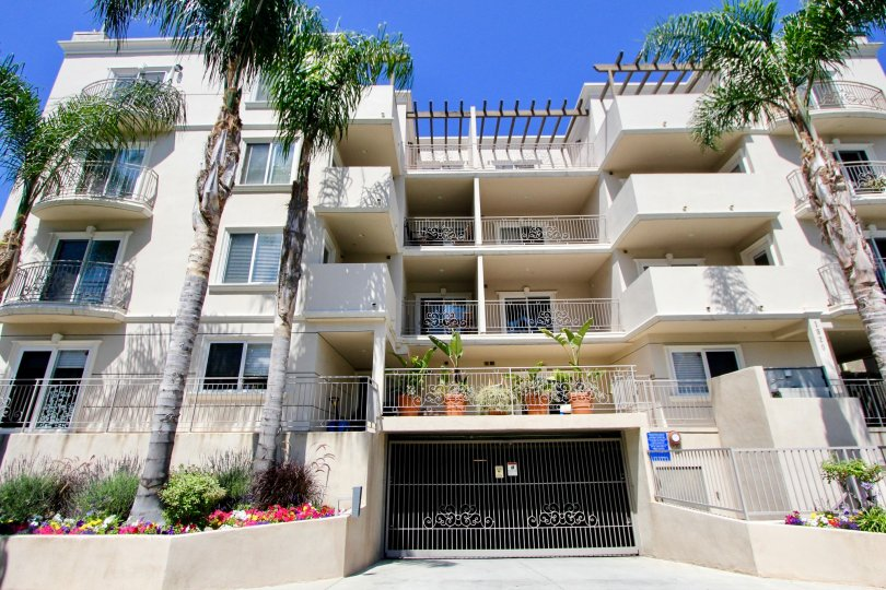 Super beautiful Malcolm Avenue Condos with her creamy walls, Westwood, California
