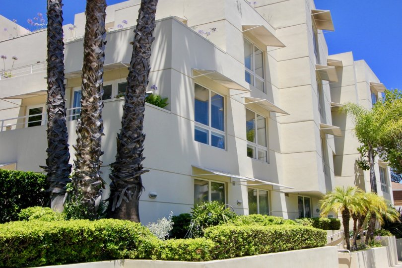 A very big clean place to stay with is just in this place called The Enterprice Condominuim