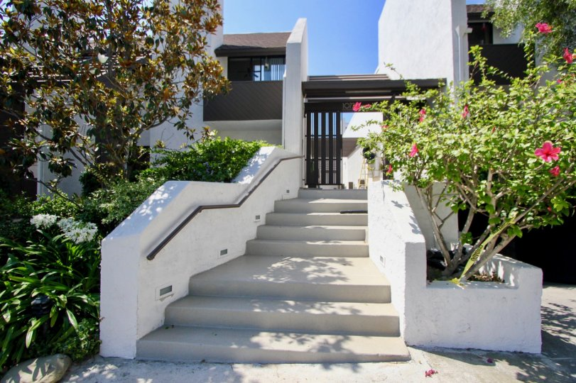 Stairway to the amazing and neatly crafted Village Townhouses, Westwood, california