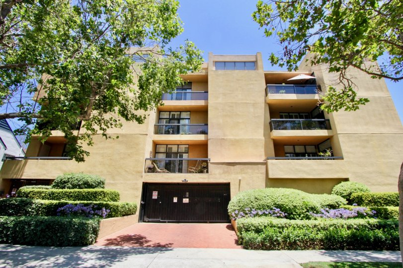 beautiful condo in westwood with greenn shrubs in front