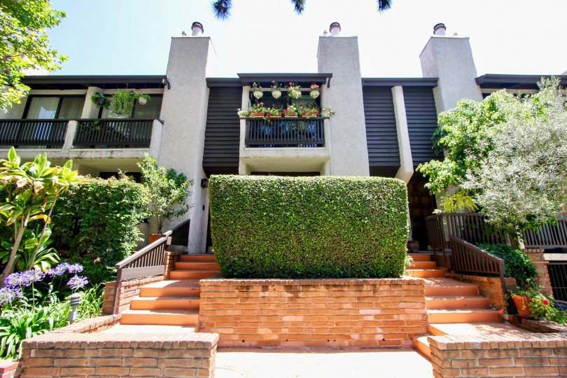 Beautiful designer homes with a well laid out manicured garden in Westwood Townhouses, Westwood, California.