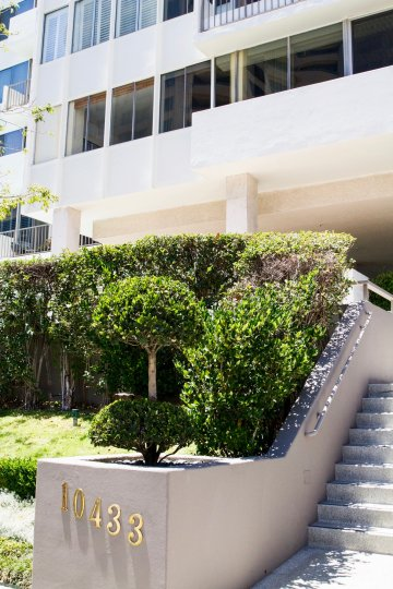 The landscaping at the Wilshire Lencrest in Westwood