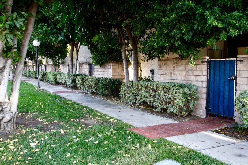 The sidewalk up to Sherman Court
