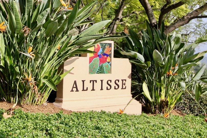 amazing homes at Altisse in Aliso Viejo, California