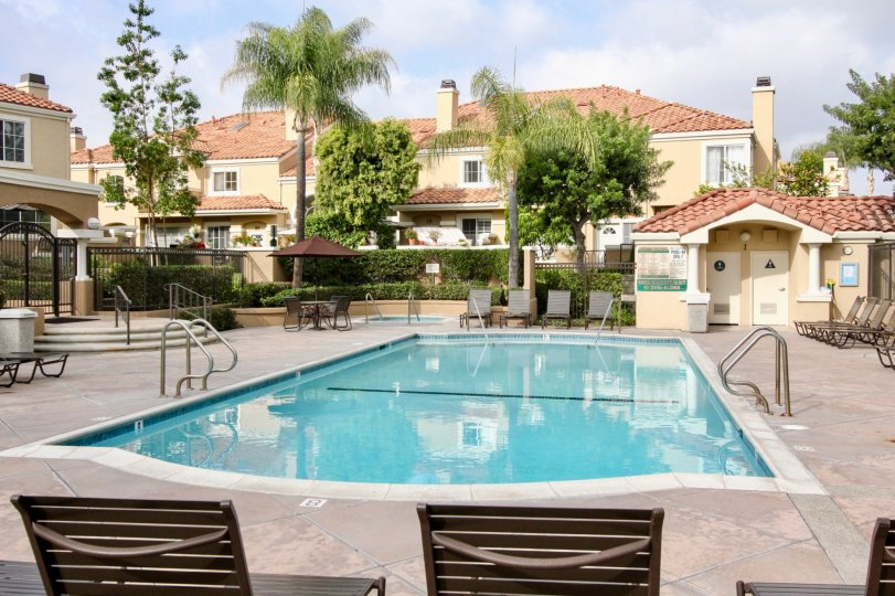 Fabulous swimming pool with trees around near villas of Applause in Aliso Viejo
